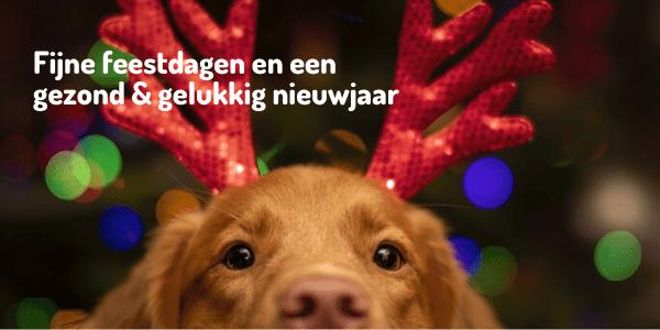 KennelCare - Fijne feestdagen en een gezond & gelukkig nieuwjaar