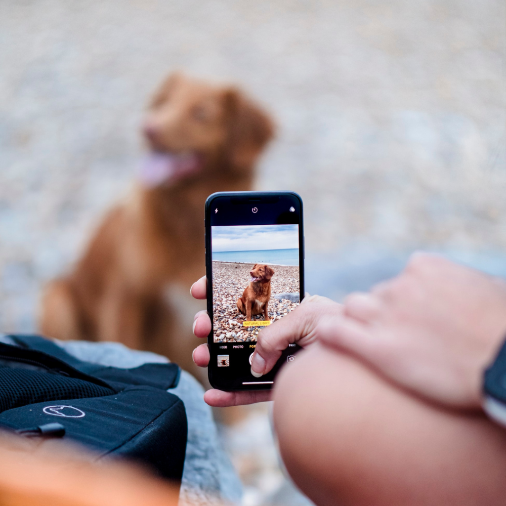 Is jouw bedrijf 'mobiel vriendelijk'?